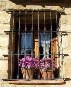 A fogvatartott szobanövények érdekében
